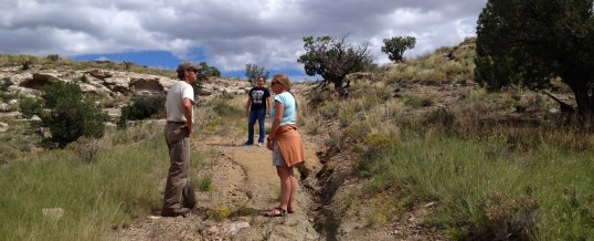 Enhancing Three Sisters City Park Lands with Reclamation Project