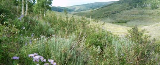 Colorado West Land Trust receives GOCO grant