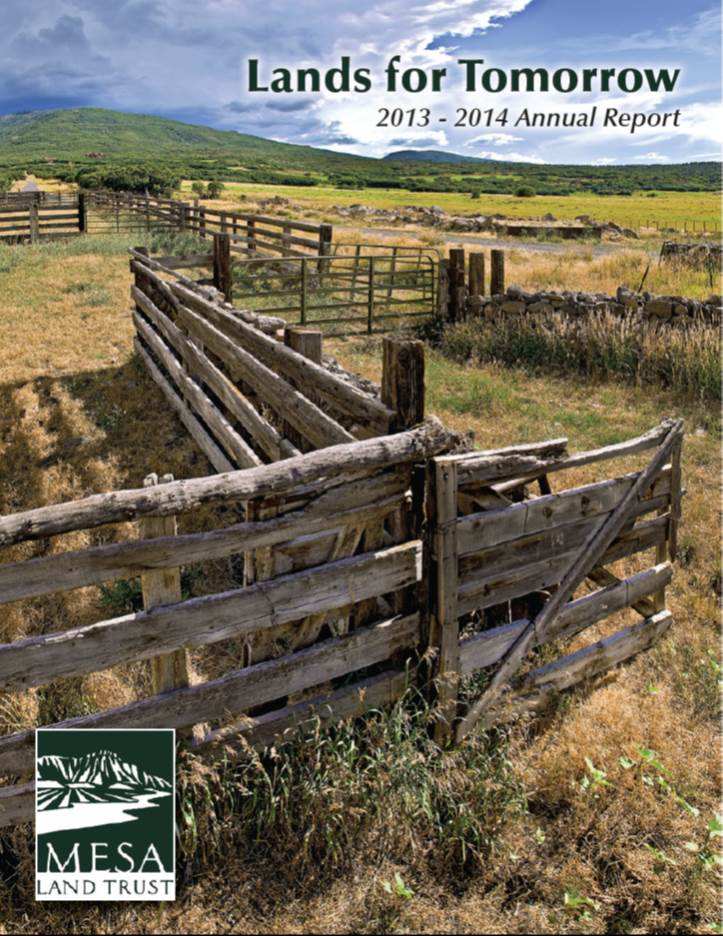 MLT Annual Report