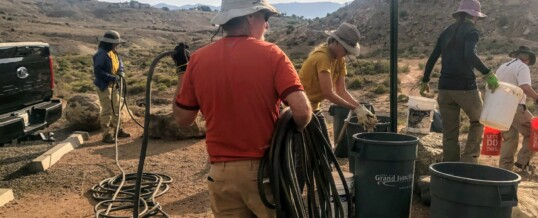 Monument Stewards volunteers support native vegetation along connector trail