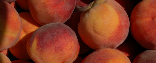 Purchase Palisade Peaches from Preserved Property