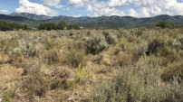 Colorado West Land Trust: A collaborative effort to better serve the region